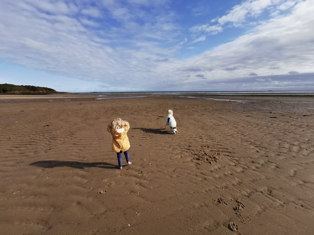 Private beach camping in Anglesey